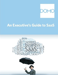 Executive Guide to SaaS