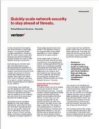 VNS securirty solution brief